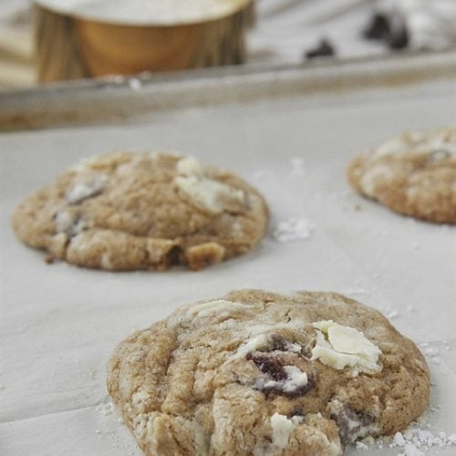 Sandlake Chocolate Chip Cookies