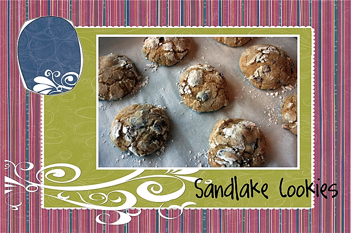 The Cookie Jar – Sandlake Cookies