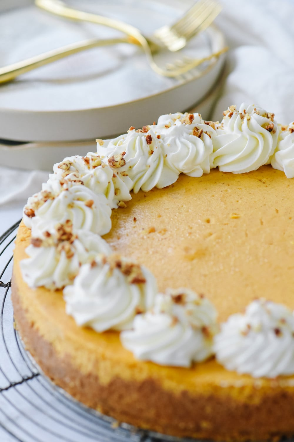 pumpkin cheesecake with whipped cream on top