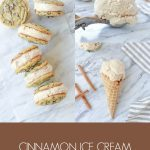 Cinnamon Ice Cream Cone