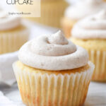 single cupcake with frosting