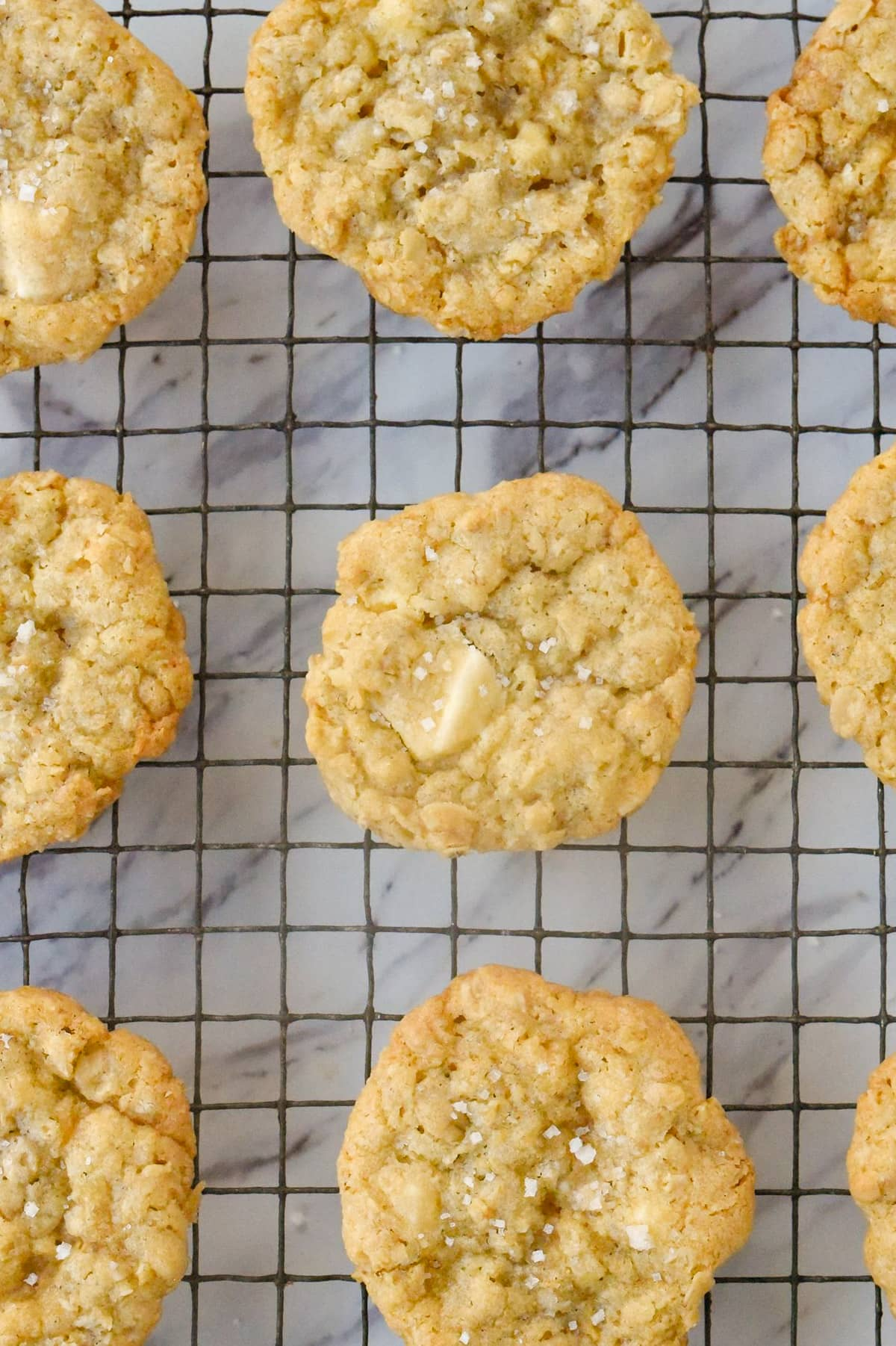 overhead shot of white chocolate chip cookies