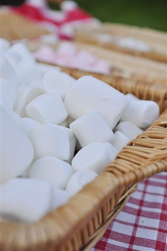 marshmallows for smores bar