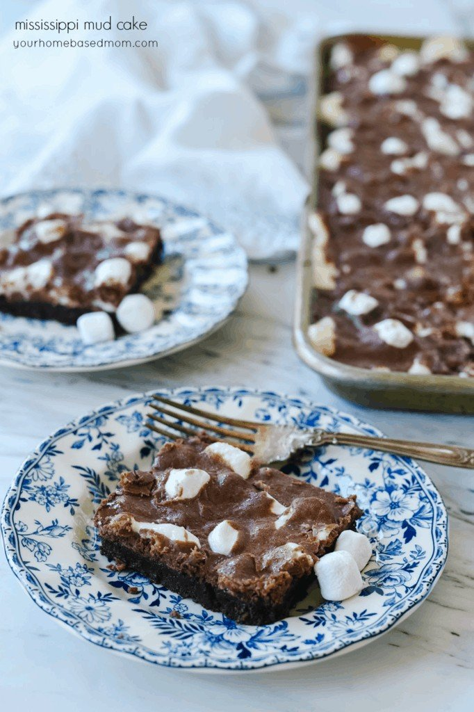 Mississippi Mud Cake on a plate