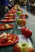 Portland}Portland Nursery Apple Tasting Festival