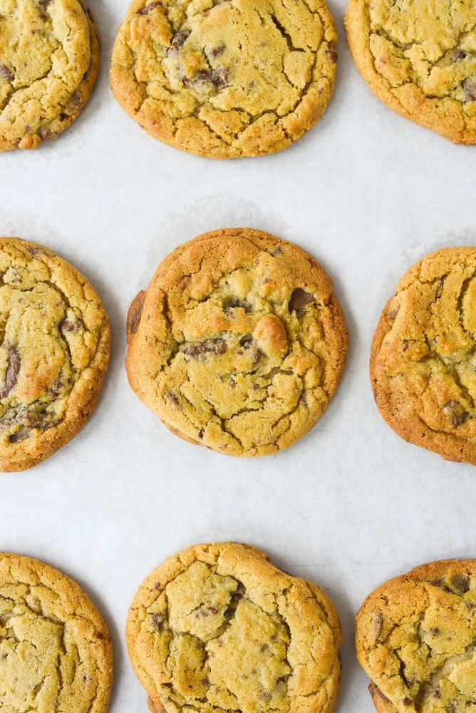 closeup of chocolate chip cookie