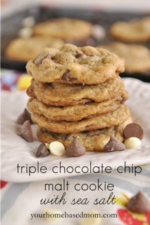 pile of chocolate malted cookies