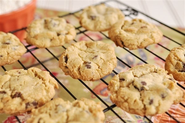 gluten free Chocoalte Chip Cookies @yourhomebasedmom.com
