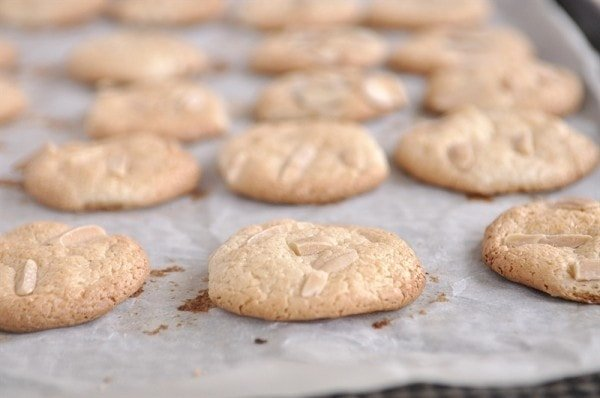 Italian Almond Cookies cooling on cookie sheet