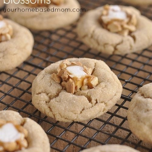 The Perfect Holiday Cookie Plate and Salted Peanut Butter Blossoms