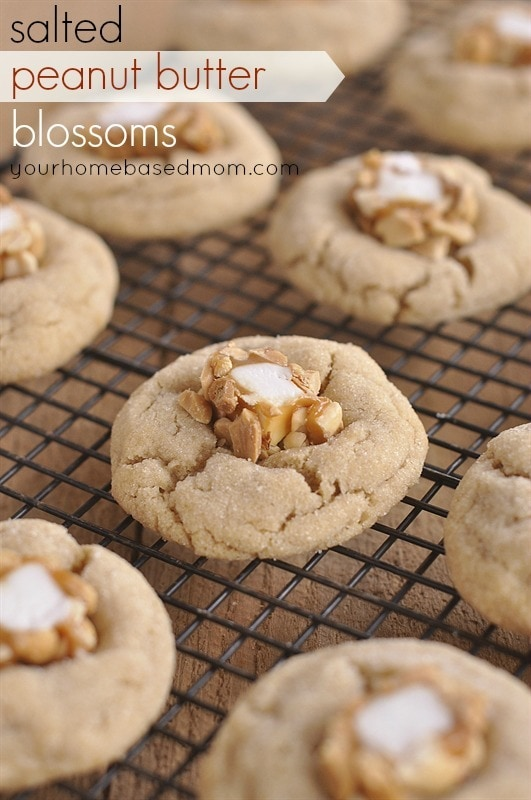 Salted Peanut Butter Blossons