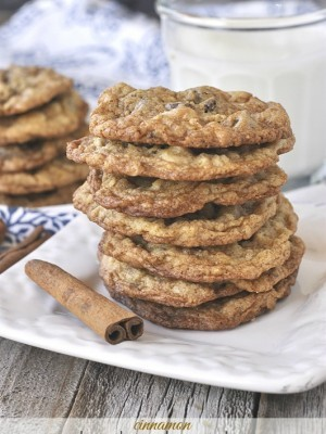 Cinnamon Chocolate Chip Cookies