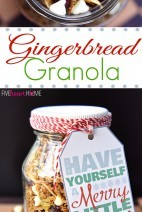 Gingerbread-Granola-with-Cranberries-Pistachios-White-Chocolate-Chips-by-Five-Heart-Home_700pxCollage