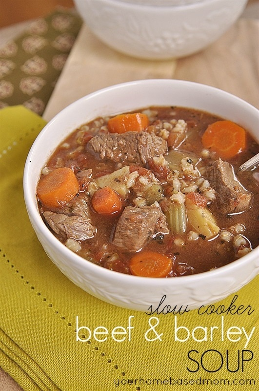 30 Easy Delicious Family Friendly Slow Cooker Meals