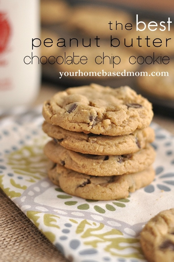 The Best Peanut Butter Chocolate Chip Cookie ever!