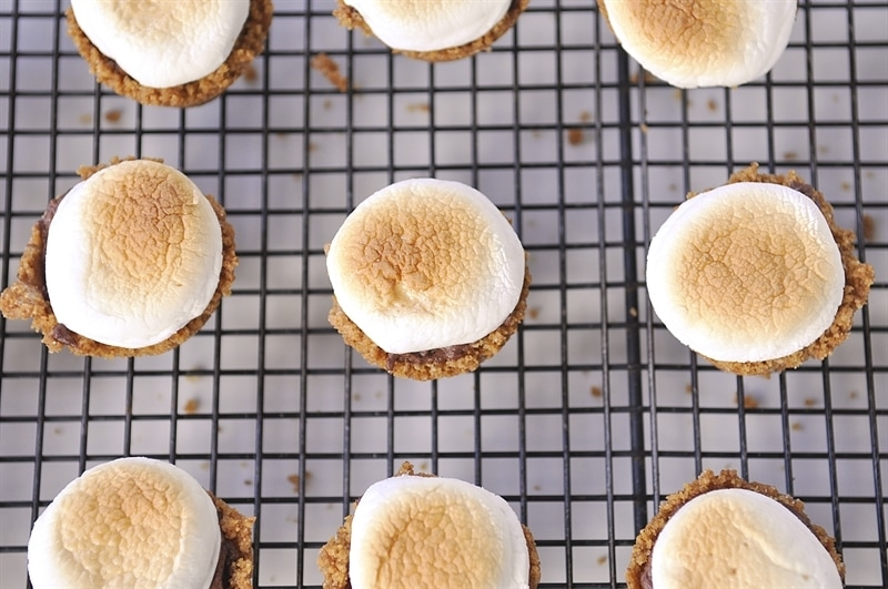 and put them under the broiler until the top of the marshmallow is golden brown. Watch them closely so they don't burn.