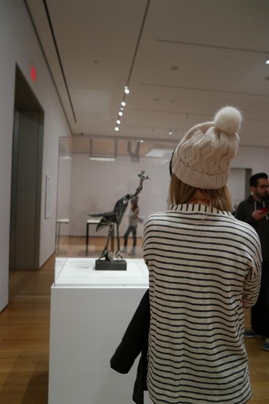 Picasso Exhibit