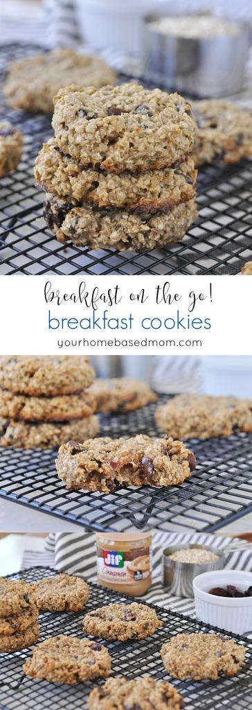 Breakfast Cookies - Breakfast on the go