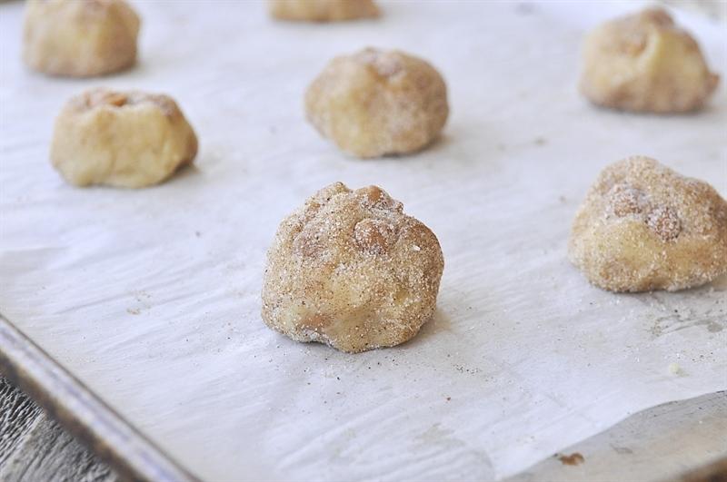Pumpkin Spice Snickerdoodle dough