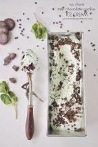 Mint Chocolate Cookie No Churn Ice Cream