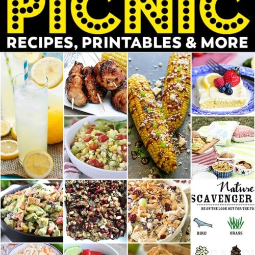 Planning the Perfect Picnic Ideas