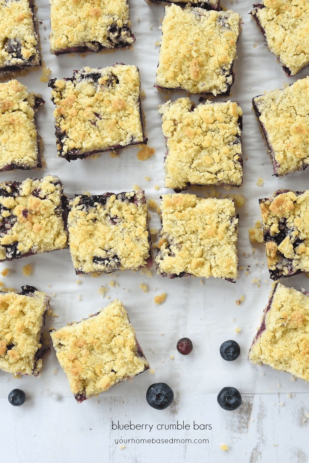 blueberry crumble bars cut into squares