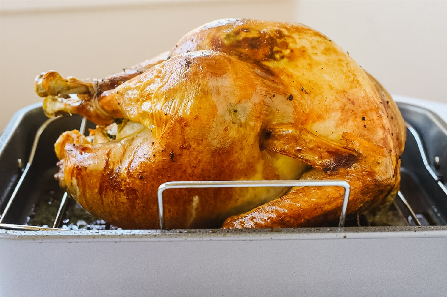 roasted turkey in a roasting pan