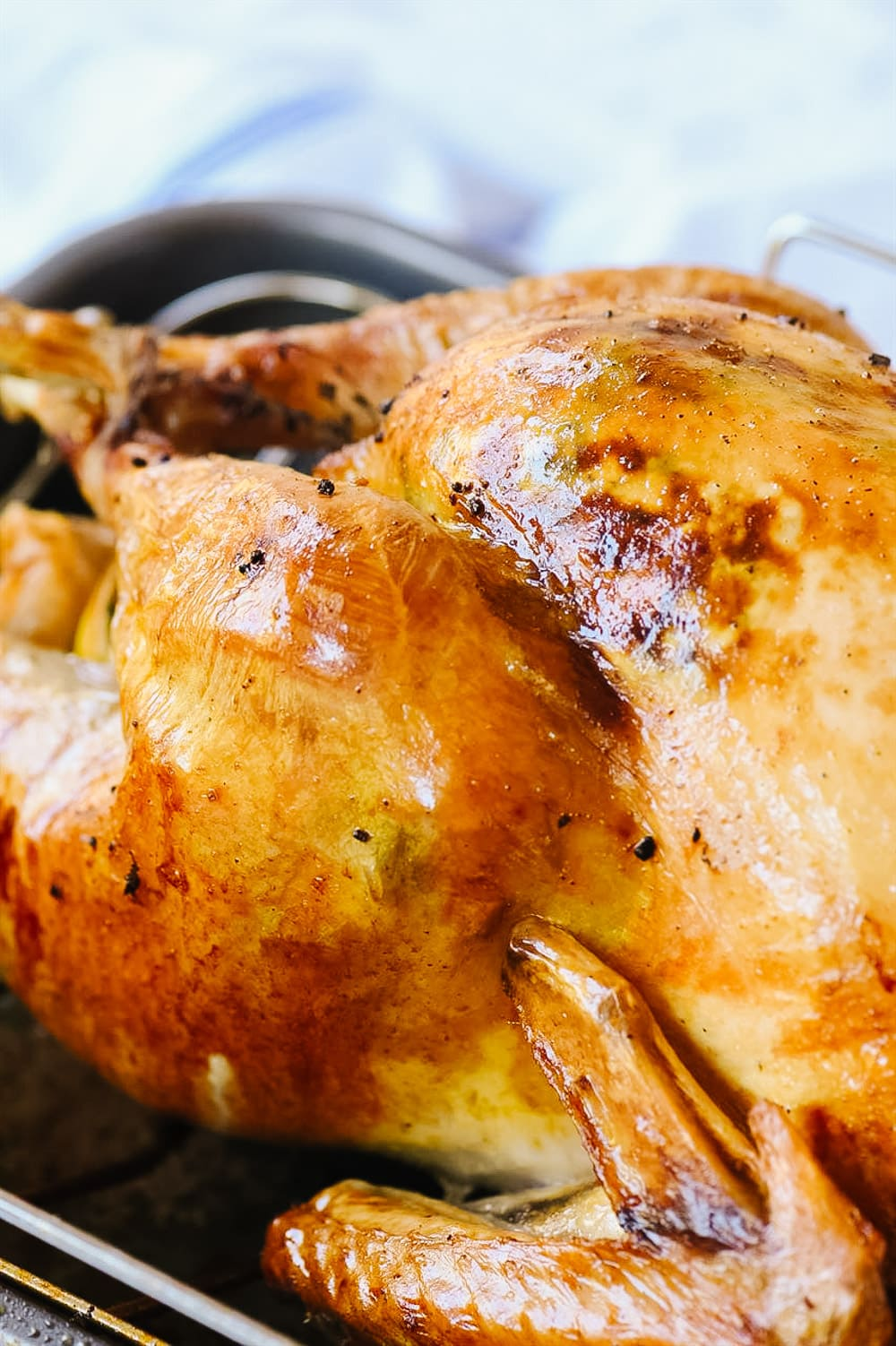 golden brown turkey in roasting pan