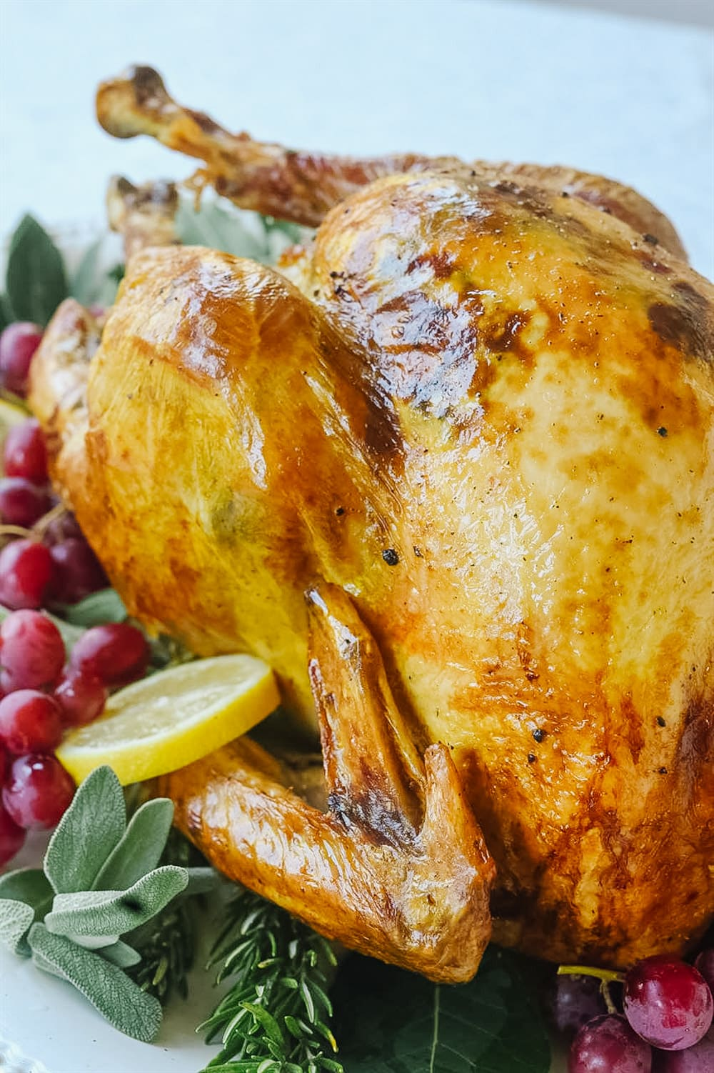 side view of a roasted turkey