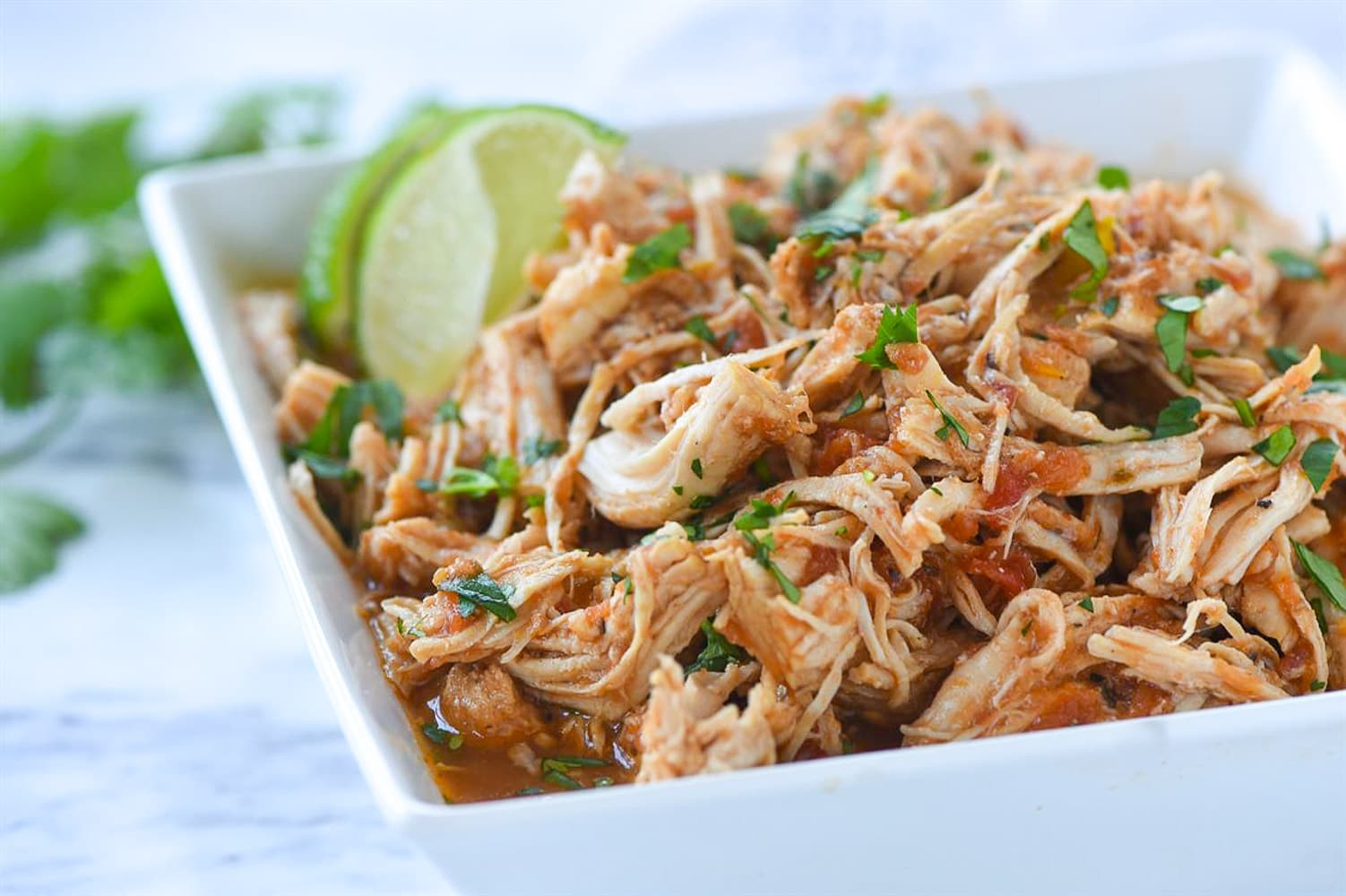 closeup of shredded mexican chicken