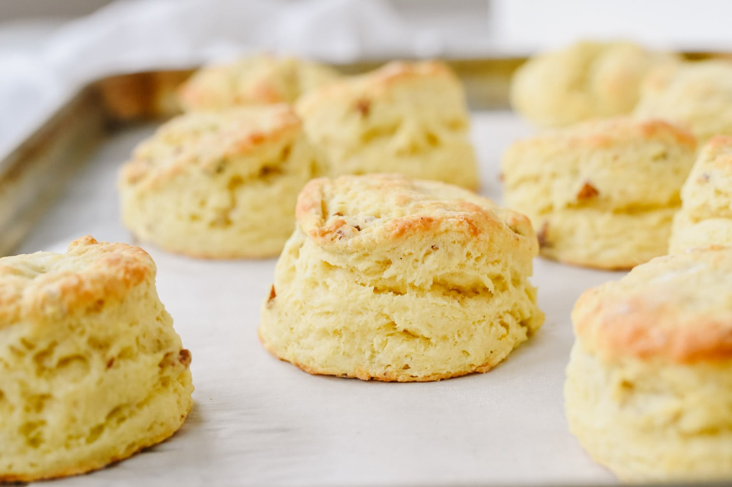 sour cream biscuits on a cookie sheet
