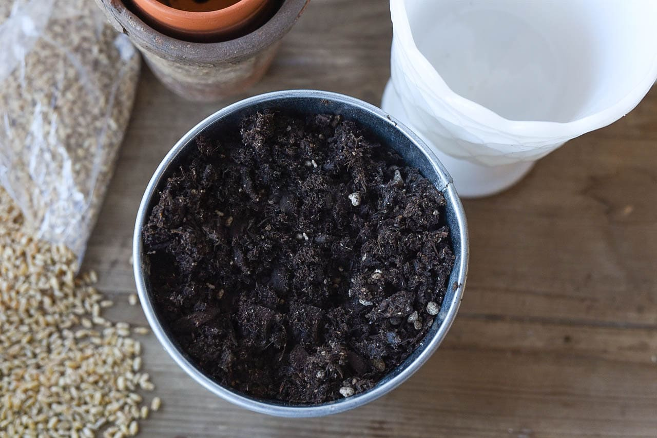 dirt in container
