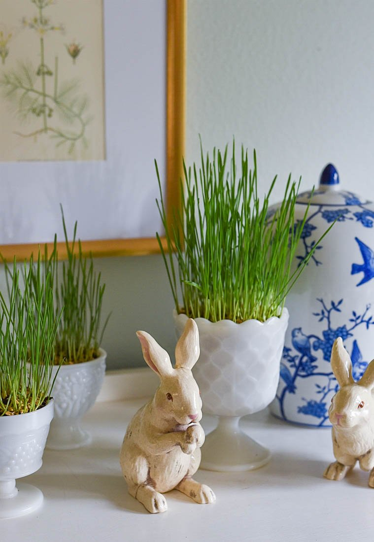 easter grass in a container