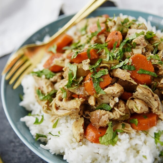 bowl of chicken curry over rice