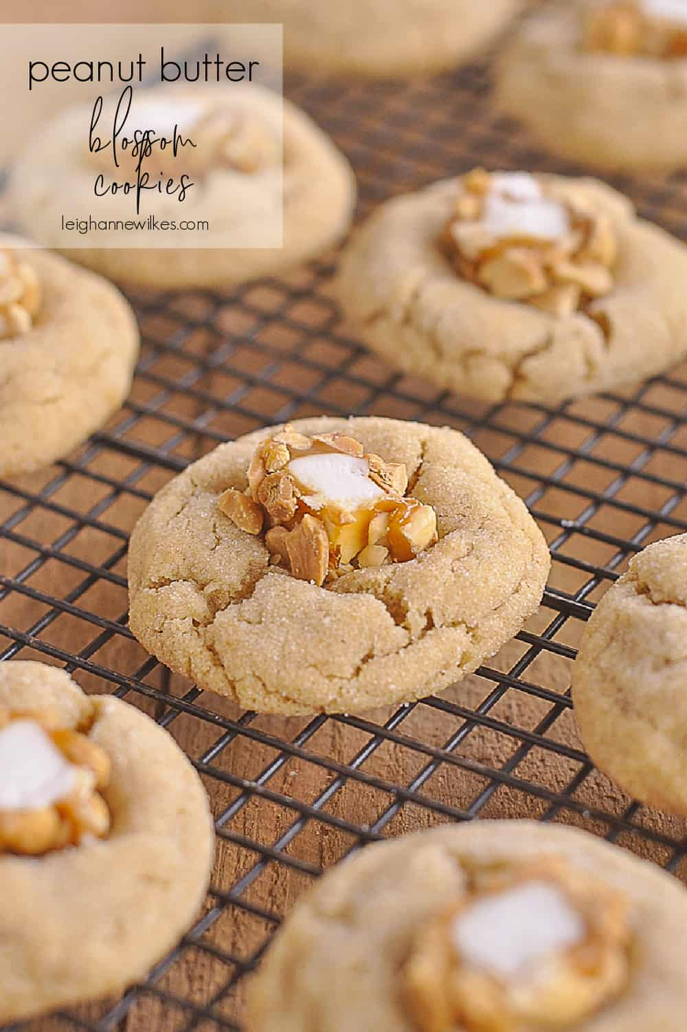 peanut butter blossom cookies on a rack