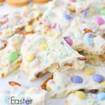 broken pieces of easter bark