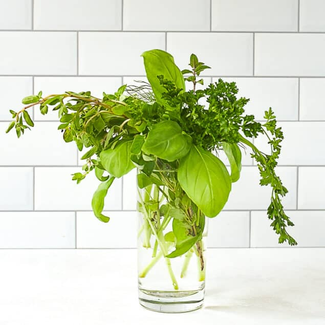 bouquet of fresh herbs in a glass