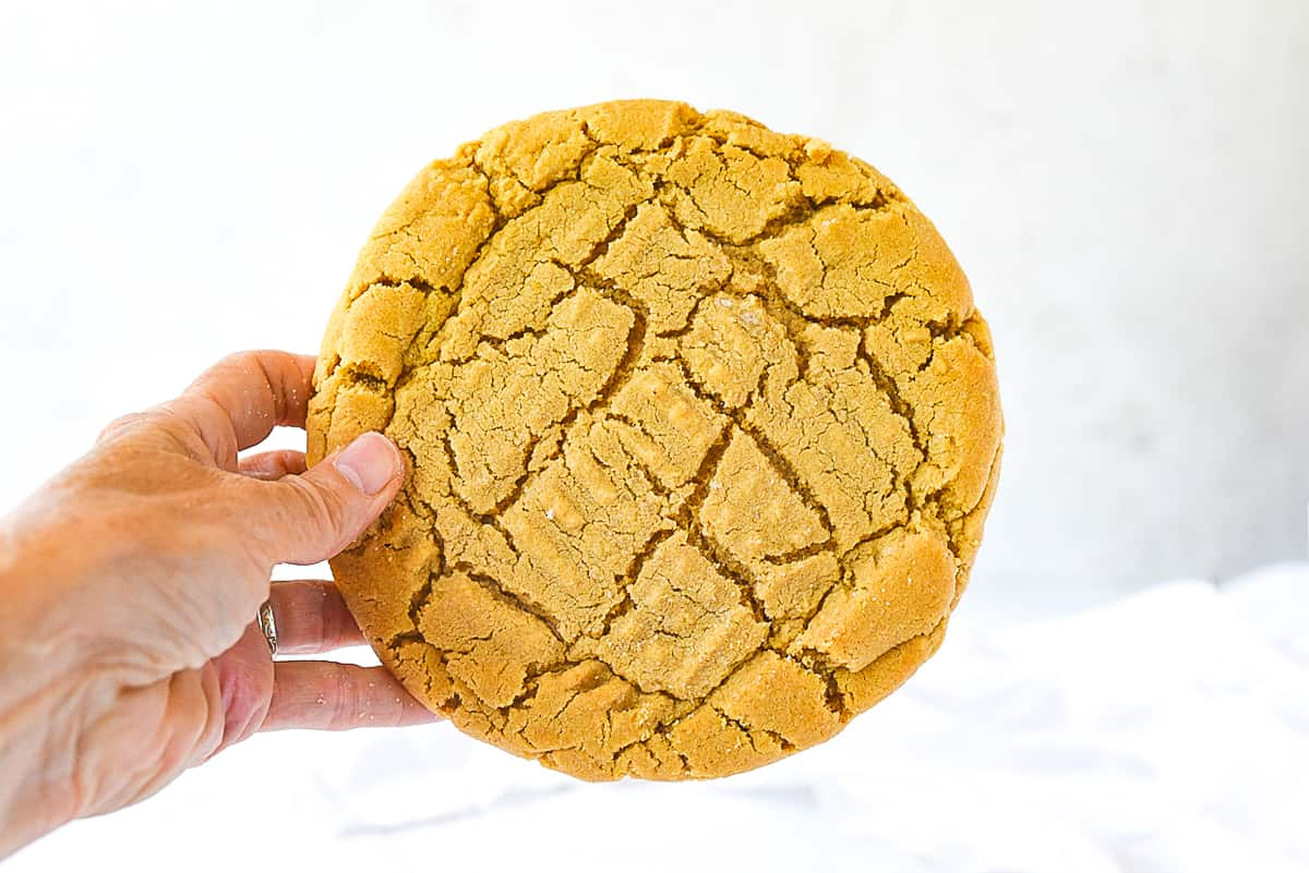 hand holding cookie