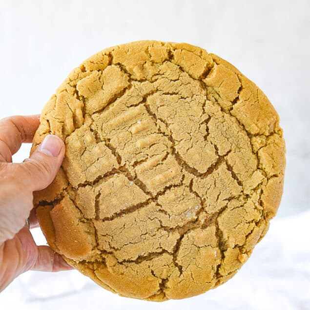 hand holding a giant peanut butter cookie