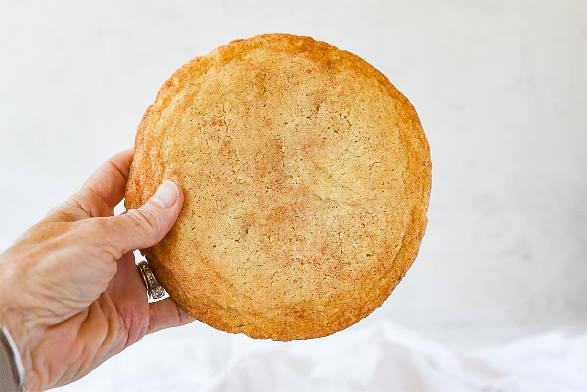 holding a snickerdoodle cookie