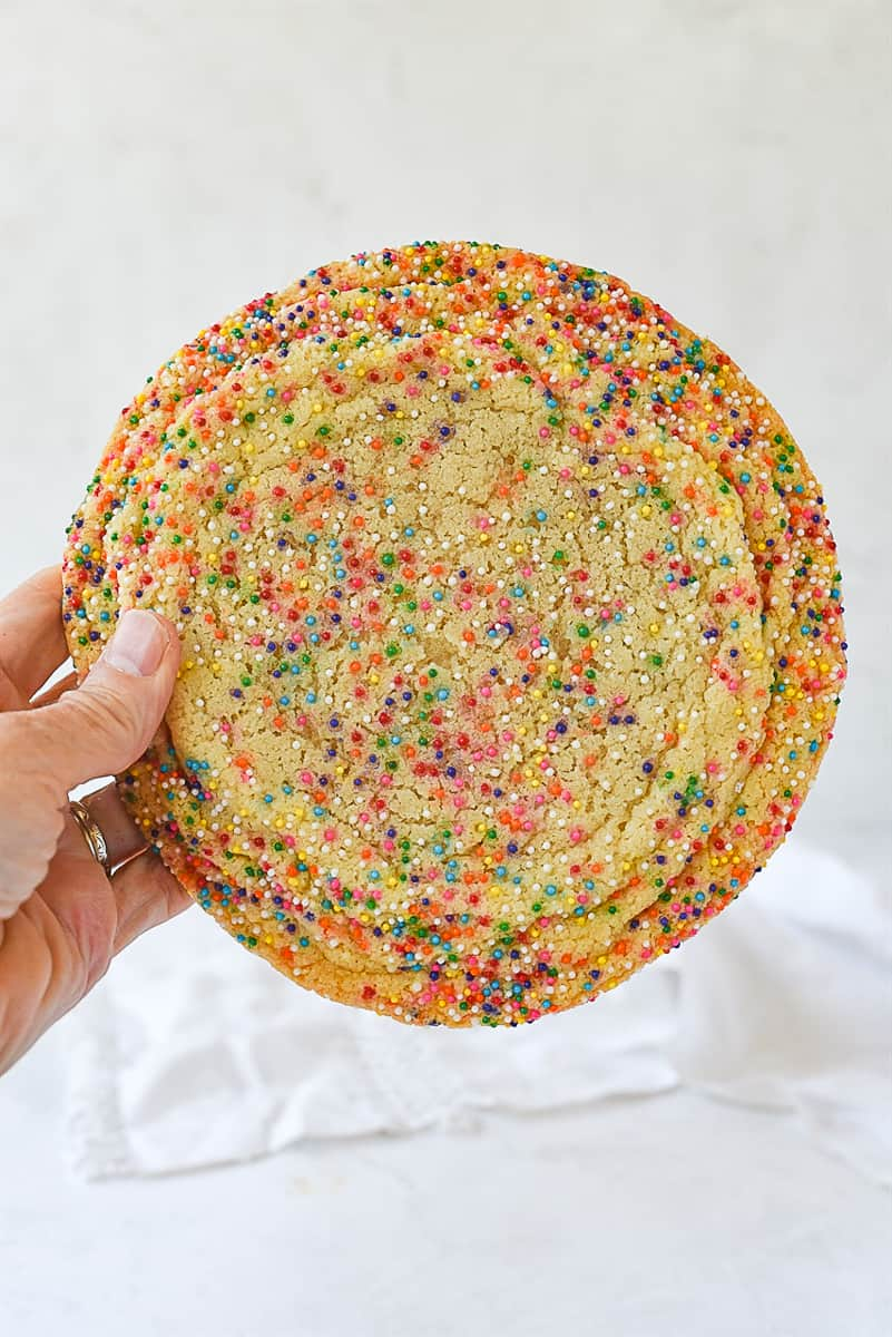 hand holding sugar cookie with sprinkles